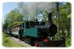 Le chemin de fer forestier d'Abreschviller - Une balade en train à vapeur au coeur de la forêt